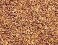 Cotton Seed Meal Animal Feed