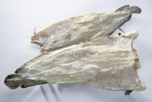 Dried haddock Fish