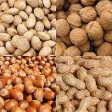 Dry nuts in shell (Almonds, Pistachios, Walnuts, Peanuts, Hazelntus)