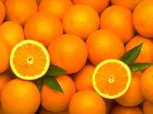 Fresh Orange Fruits