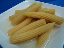 VIETNAM CANNED BABY CORN/ THE HIGH QUALITY