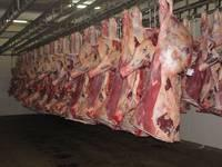 Halal Frozen Beef Meat Pork Meats, Lamb Meats and Offals