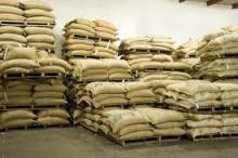 We supply high quality organic Beans