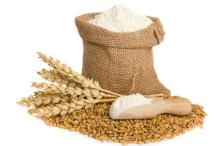 QUALITY WHEAT FLOUR FOR SUPPLY