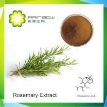 Rosemary   Extract  - Rosmarinic   acid ,Carnosic  acid