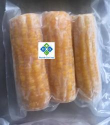IQF Sweet Corn Cobs