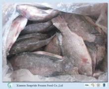 Whole Frozen Tilapia