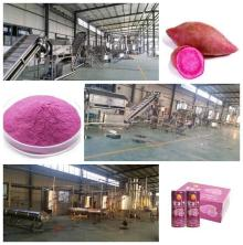 Purple sweet potato processing line machine