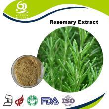 Acegem Produce the  Rosemary   Extract   Rosmarinic   Acid  Powder