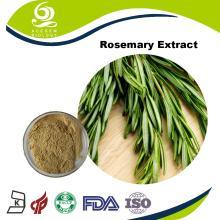 Produce the Dried Rosemary Extract Rosmarinic Acid 2.5%~98%