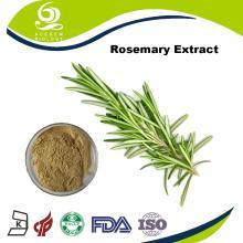 Dried Rosemary Extract Rosmarinic Acid 2.5%~98%