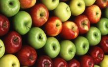 Golden Delicious Apples, Gala Apples,Idared Apple
