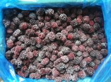 IQF Blackberry, frozen blackberry