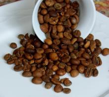 Alkalized Cocoa, Cocoa Powder, Cocoa Bean
