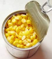 New Crop Canned Yellow Sweet Corn