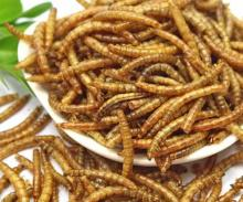 Microwave dried mealworm-Bird food Chicken food Fish food,Aquarium Fish Food,Pet food