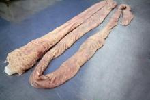 Pork rectum