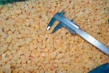 Chinese Hot Selling IQF Frozen Sweet Potato
