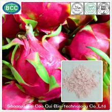Free Sample High Quality Organic Red Dragon Fruit Powder For Best Price