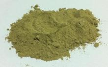 pure green coffee bean extract powder for sale