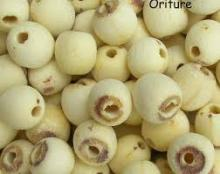 Dried white lotus seeds Grade A for sale