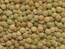 Green football lentils