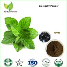grass   jelly , grass   jelly  powder, jelly   grass  mesona chinensis