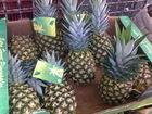 Calle Real Pineapples