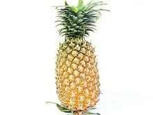 QUEEN PINEAPPLE