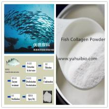 fish collagen,fish collagen powder,hydrolyzed fish collagen