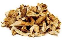 Dried Matsutake mushroom