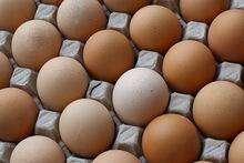 High Fresh Table Eggs Brown And White