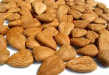 Almond nuts /almond Kernel/ Almond whole Bitter and sweet Almond