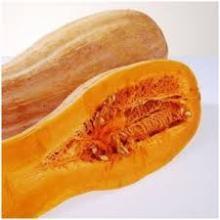 Freeze  Dried   Pumpkin   powder