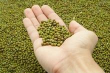 Unpolished Green Mung Beans