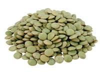 dried green  lentils   export   lentils