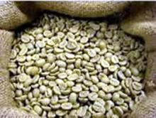 ROBUSTA Roasted Green Coffee Beans