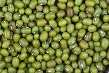 High quality green mung bean