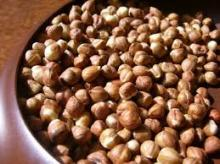 HAZELNUTS (Raw, Natural, Roasted and 100% Organic- Grade A- High Quality )