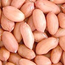 Groundnut/Peanuts