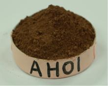 Supply Alkalized Cocoa Powder (cacao polvo) 10/12 AH01 For purchasing