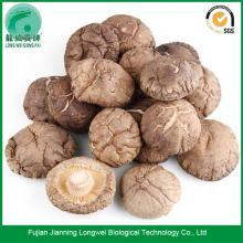 Mushroom  Dried   Shitake  for sale