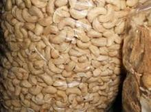 Best Quality Cashew Nuts for sale from Brazil