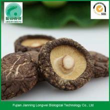 Chinese dried mushroom shiitake mushroom prices