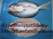 pangasius, basa , tra , cream dory swai fish butterfly