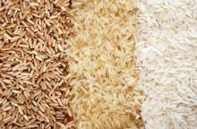 THAI LONG GRAIN RICE / BROKEN RICE / JASMINE RICE