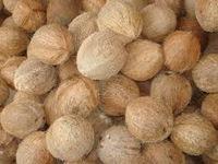 Grade A Fresh fruit-fresh coconuts