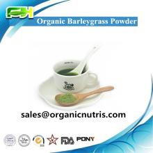 New Certified Organic Rice Protein Powder