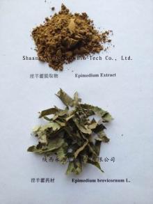 Epimedium Breviconum P.E. natural sex enhancement maca P.E. Cistanche Deserticola P.E