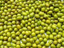 Зеленая Фасоль Мунг